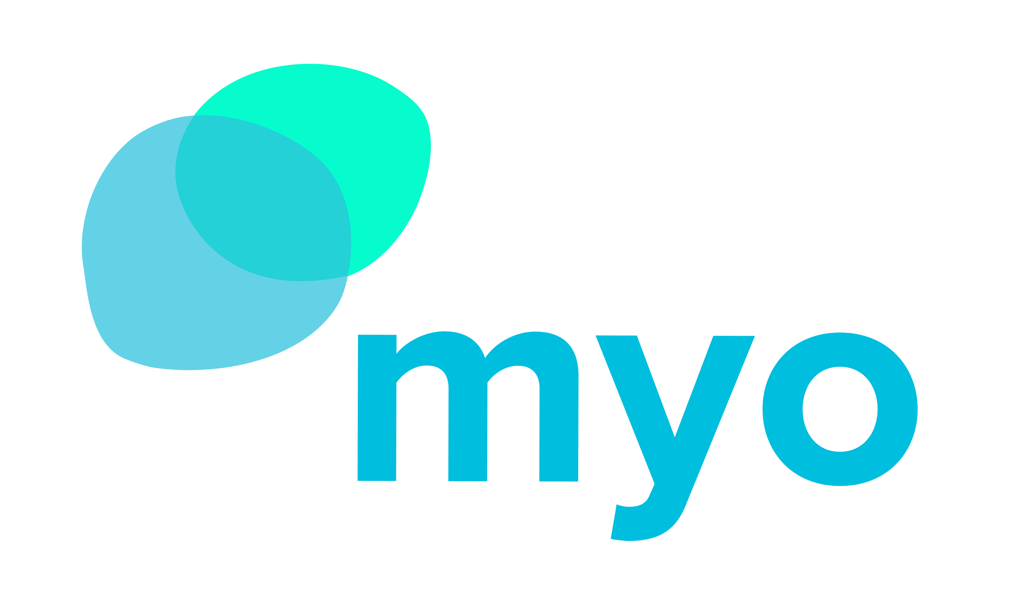 Myosotis